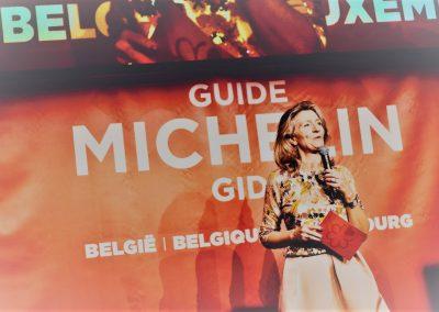 Michelin Delamar Simone